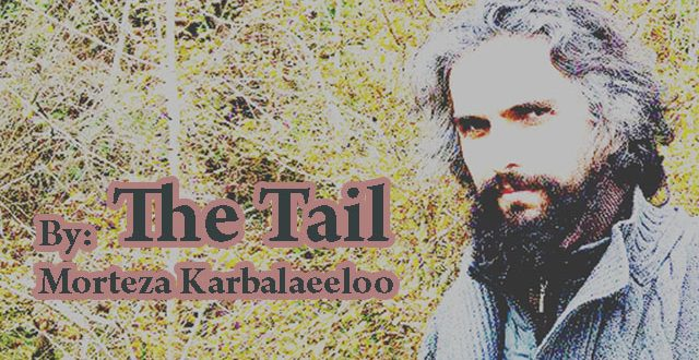 The Tail / By: Morteza Karbalaeeloo